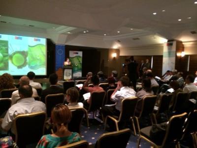 Yeşil Yıldız Bilgilendirme Toplantısı