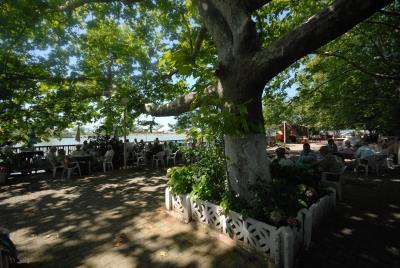 Yenimahalle (Sakarya Nehri Ağzı)