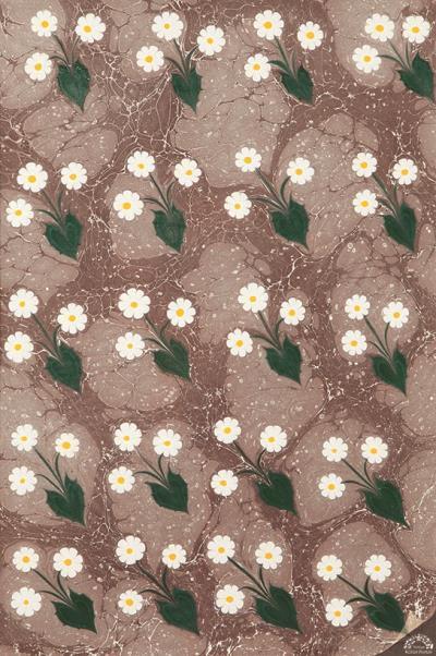 Baharın Nazlı Çiçekleri