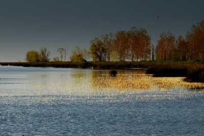 Kızılırmak Deltası (Fotoğraf: Samsun İl Kültür ve Turizm Müdürlüğü arşivi)