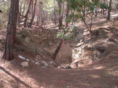 Emirler Örenyeri ve Kent Ormanı Müzesi (Yenişehir-Mersin) (Fotoğraf: Mersin Müze Müdürlüğü Arşivi)